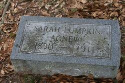 Sarah <i>Lumpkin</i> Agnew