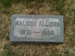 Malinda Allison