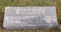 Rosemary <i>Bever</i> Hammond