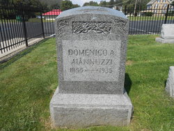 Domenico Aiannuzzi