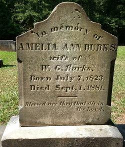 Amelia Ann <i>Friddle</i> Burks