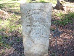 Edwin J Whitney