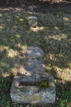 Lydia Ann Elizabeth <i>Snook</i> Ramsburg