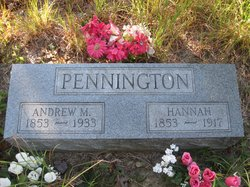 Andrew Madison Pennington