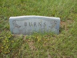 Alvin Wilson Burns