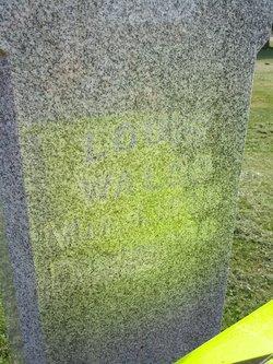 Louis Waldo