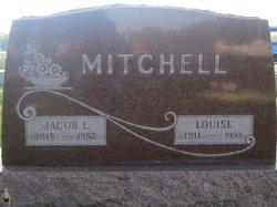 Jacob Lewis Mitchell