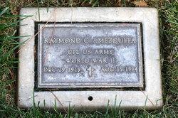 Raymond G Amezquita