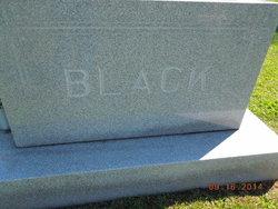 Lulu A <i>More</i> Black
