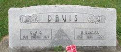 Agnes Bernice <i>Farwell</i> Davis