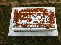 David Waters Houston