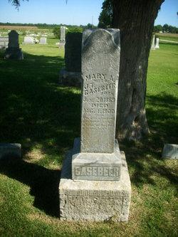 Mary Ann <i>Edgmand</i> Casebeer