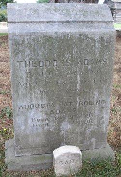Theodore Adams
