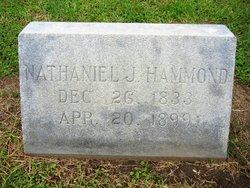 Nathaniel Job Hammond