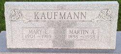 Martin A. Kaufmann
