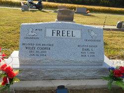 Darl L. Freel