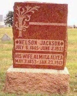 Peter Nelson Jackson