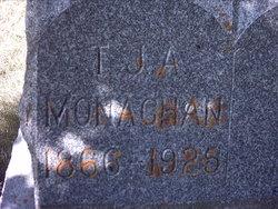 Mr. T J A Monaghan