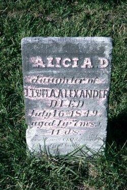 Alicia D Alexander