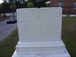 Henry S. Davis
