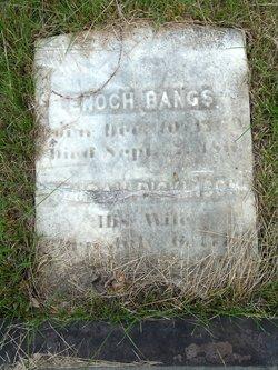 Azubah <i>Dickinson</i> Bangs