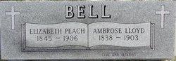Pvt Ambrose L. Bell