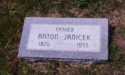 Anton Janicek