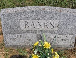 Sue Jane Susie <i>Hetrick</i> Banks