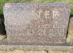 Norman G Foster
