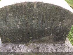 Lavinia Lea Vena Barnard