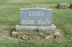 Fern DeLee <i>Metzner</i> Wood