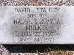 David Stanley Mulkey