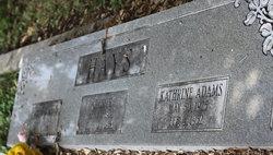 Ollie Katherine <i>Adams</i> Hays