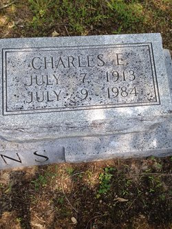 Charles E. Watkins