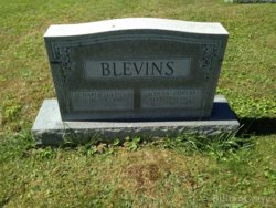 Aldena Odessa <i>Reedy</i> Blevins