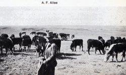 Abraham Frank Allee
