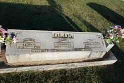 Lydia Ann <i>Norman</i> Olds
