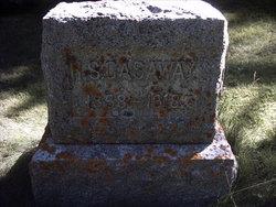 Harry Sylvester Ves Gasaway