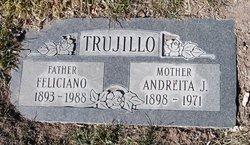 Andreita J Trujillo