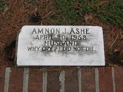 Amnon J Ashe