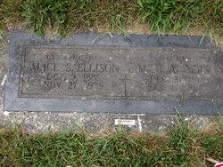 Alice S. Ellison