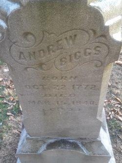 Andrew John Biggs