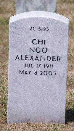 Chi Ngo Alexander