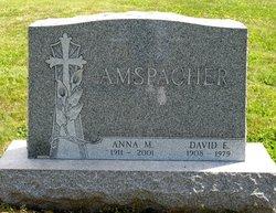 Anna Margaret <i>Cochran</i> Amspacher