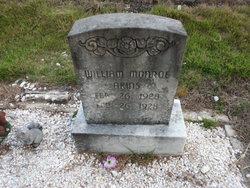 William Monroe Akins
