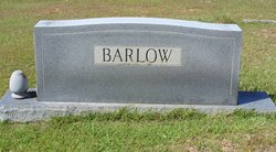 Iris <i>Holmes</i> Barlow