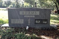 James Seymour Adams