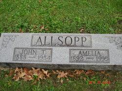 Amelia <i>Hograve</i> Allsopp