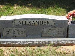 Alvie J Alexander