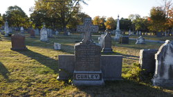 Daniel J Curley